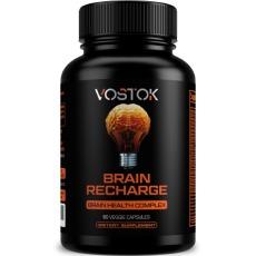 Vostok Brain