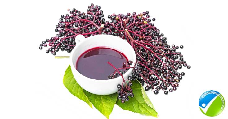 Cup of Elderberry Syrup