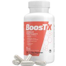 Boost X