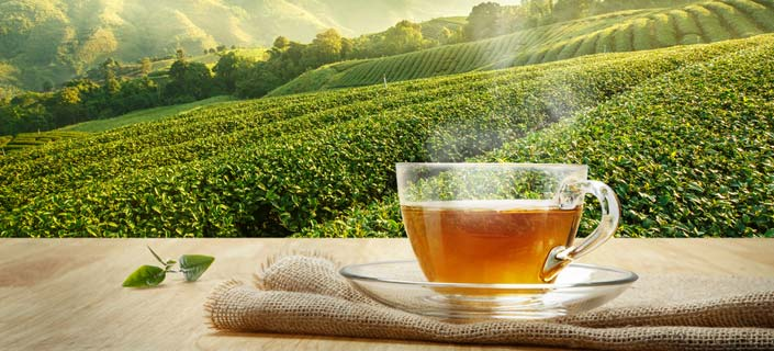 A Cup of Tea – Natural Remedy For Menopause