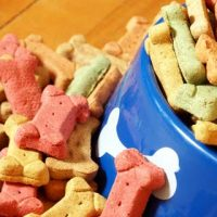 The Best Dog Joint Supplements