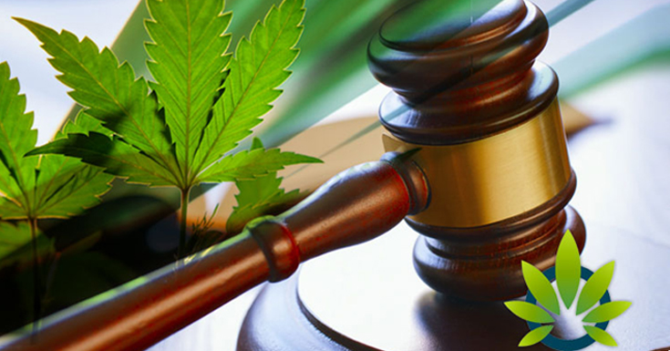 Fda Approval For Cbd Products