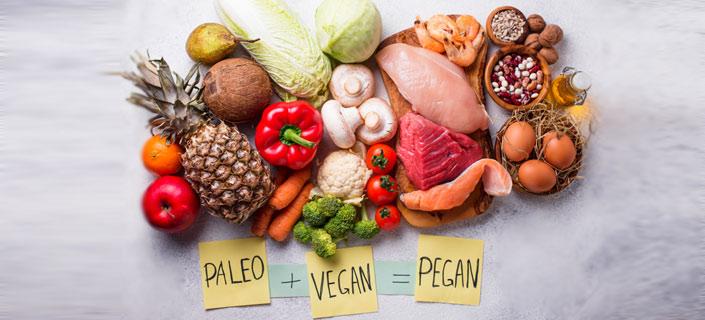 paleo vegan diet