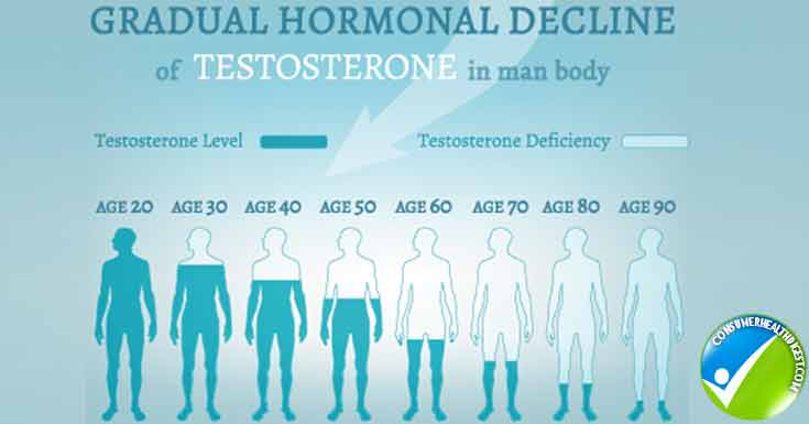 Testosterone Hormone Level